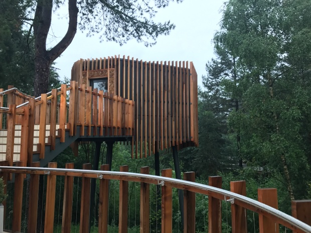 treetop sauna in forest